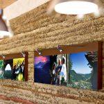 Haus der Nachhaltigkeit / House of Sustainability