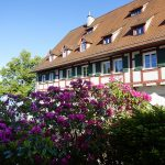 SeeHotel Amtshof / Amtshof Lakeside Hotel